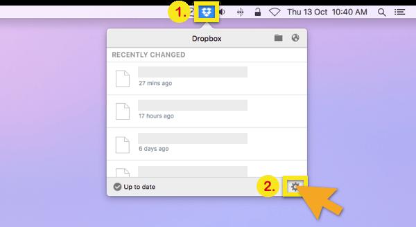 select dropbox options