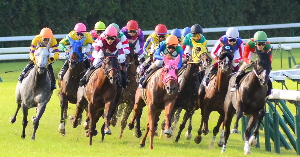 Watch Horse Racing Live