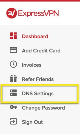 "Select ""DNS Settings"" in the menu."