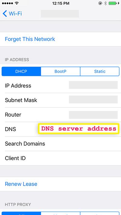 digite o endereço do servidor dns